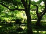 kulig warszawa